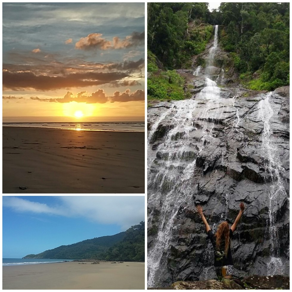 Living in the Daintree Rainforest, North Queensland