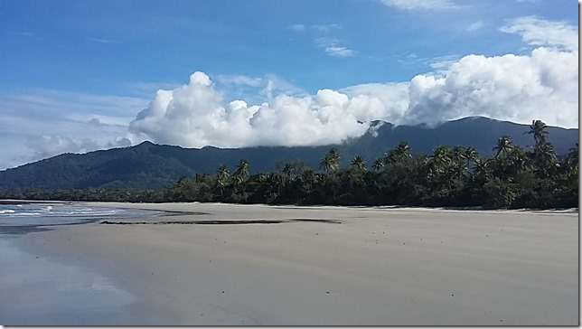 Living in the Daintree, North Queensland (14)