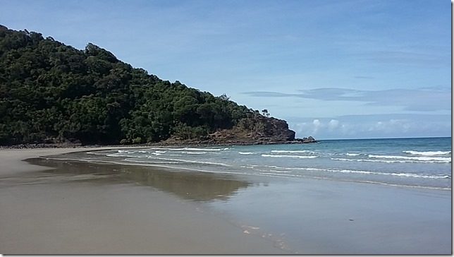 Living in the Daintree, North Queensland (15)