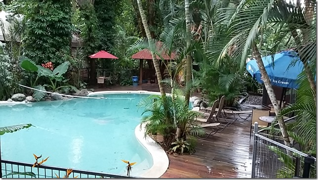 Living in the Daintree, North Queensland (4)