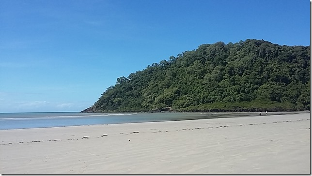 Living in the Daintree, North Queensland (5)