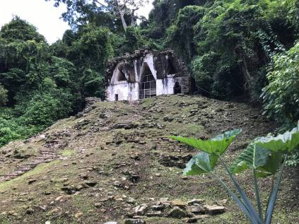 two visits to palenque