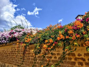 three weeks in villa de leyva